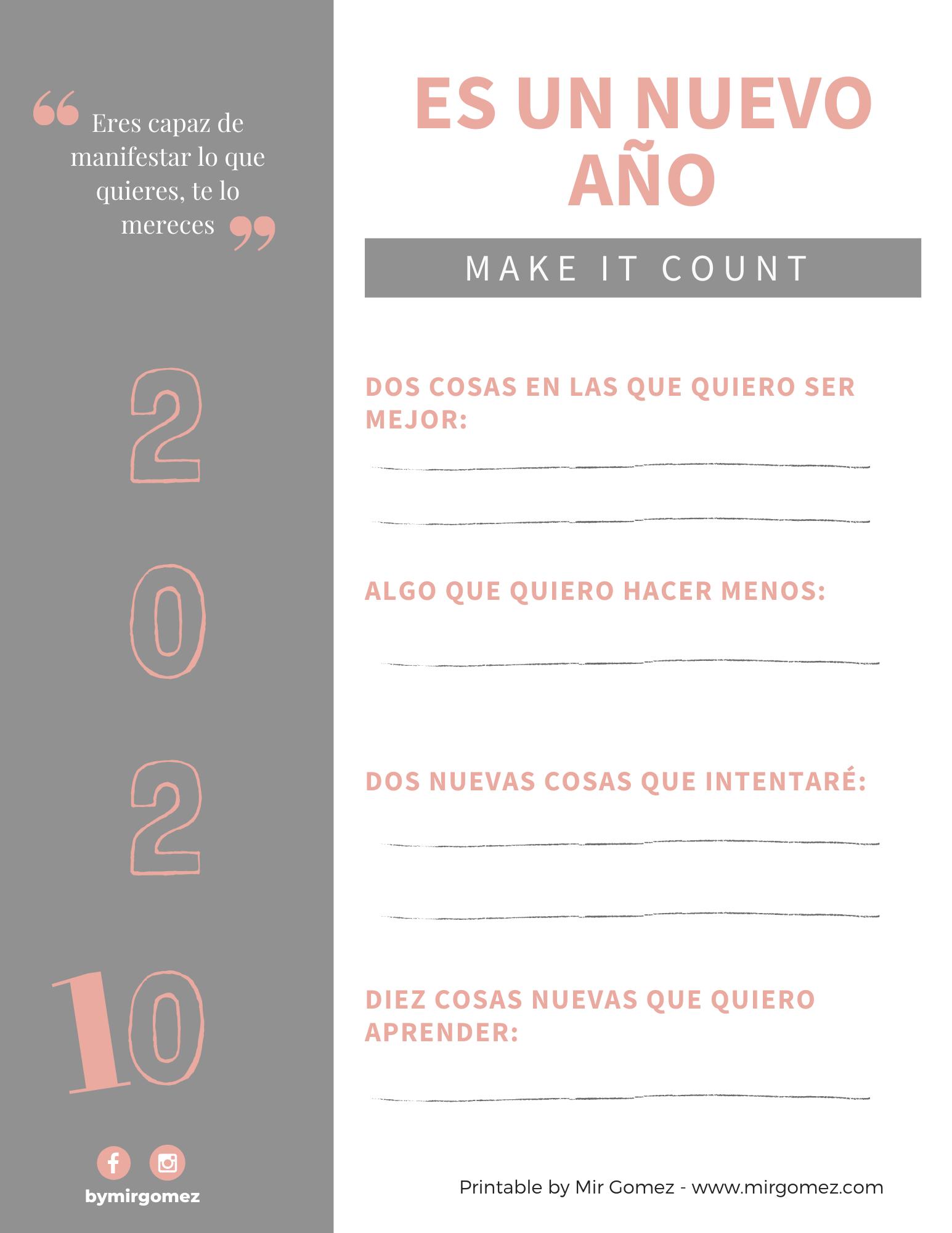 Plantilla metas 2020